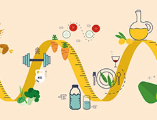 Stoffwechsel ankurbeln mit Moderner Mayr-Medizin