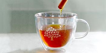 Park Igls Mayr Clinic Tyrol Austria Innsbruck Medical honey makes you healthy