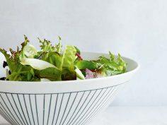 Salat – gruene Portion Gesundheit Park Igls Gesundheitszentrum Tirol Austria 1
