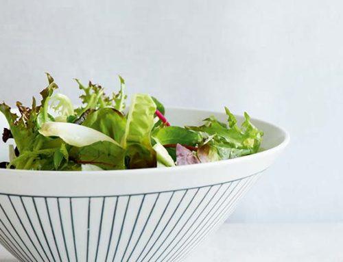 Sommersalat Rezepte aus der Modernen Mayr-Cuisine